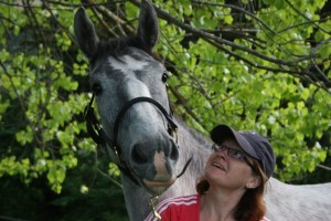 Charlene horse