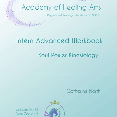 Soul_Power_Intern_Advanced_Workbook_Cover