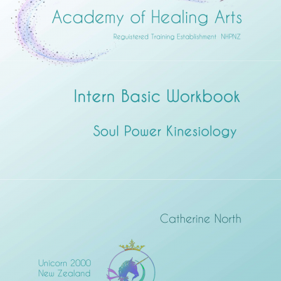 Soul Power Kinesiology Intern Basic Workbook