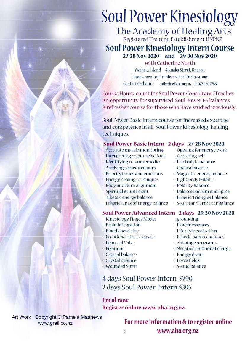 Soul Power Intern Course 2020