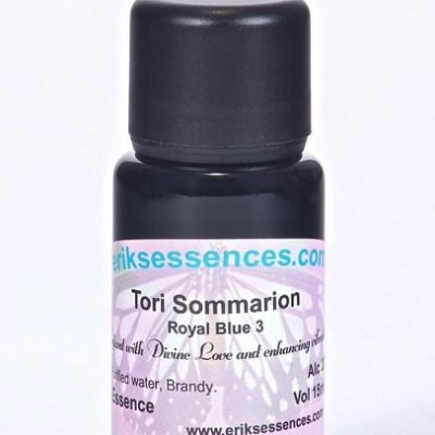 BE 20 - Tori Sommarion - Royal Blue 3 - Butterfly Essence
